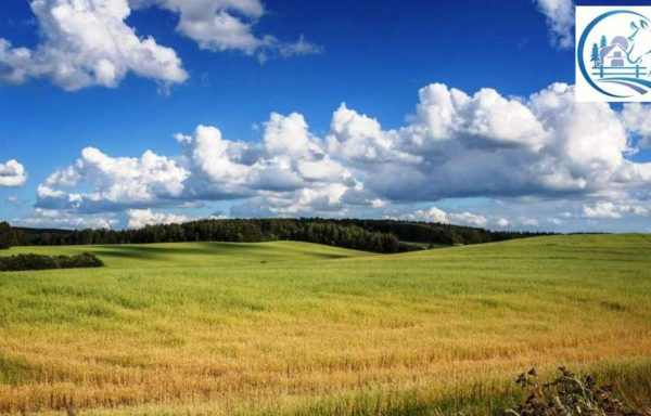 Land for sale in Smolensk region 3850 hectares (9625 acres)