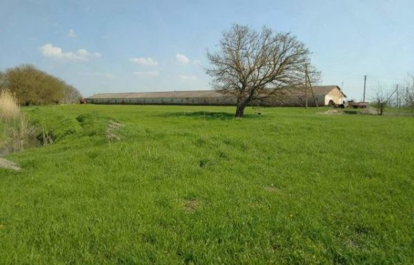 Ranch for sale in Krasnodar region (22 hectares)