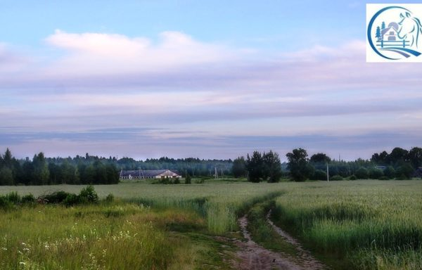 Land for sale in the Nizhny Novgorod region with an area of 16270 hectares (40675 acres)