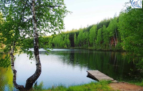 Land for a ranch with a lake in Russia