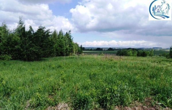 Land for sale in the Yaroslavl region with an area of 22500 hectares (50000 acres)