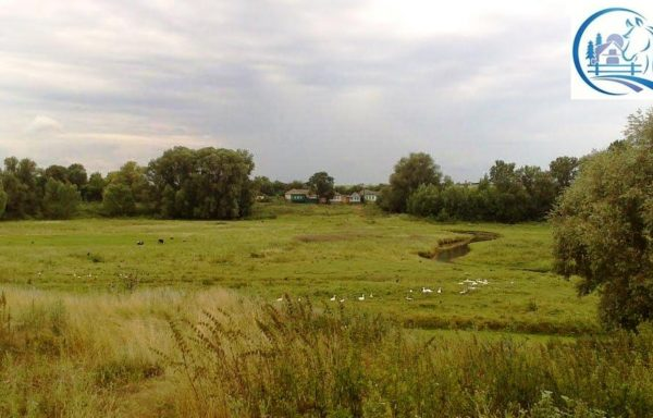 Agri land for sale in russia in Kirov region with an area of 4 000 hectares (10 000 acres)