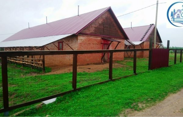 Peasant farm for sale in the Tver region
